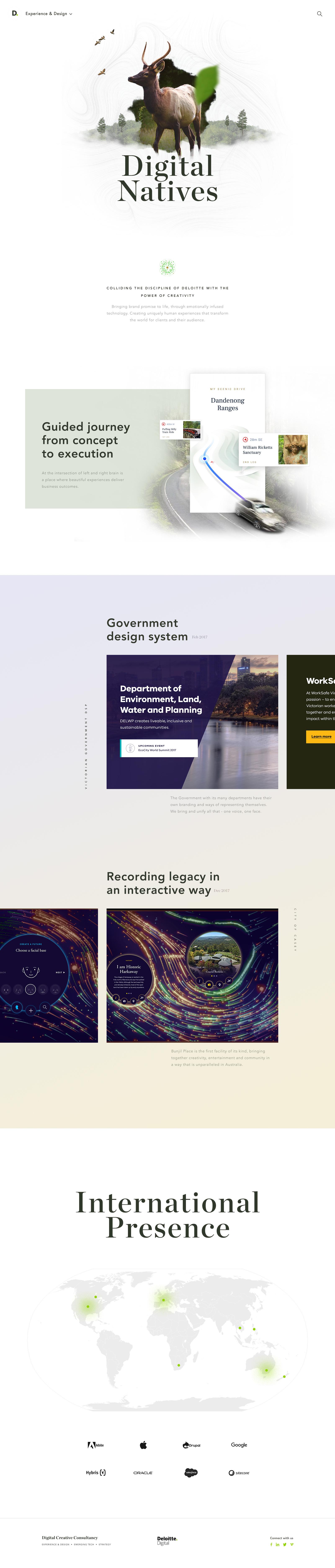 LP – Experience & Design